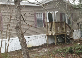 Casa en ejecución hipotecaria in Middleburg, FL, 32068,  CARNATION AVE ID: F4492557