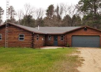 Casa en ejecución hipotecaria in Neshkoro, WI, 54960, W2574 WILD LIFE LN ID: F4493261