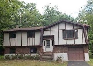 Casa en ejecución hipotecaria in Canadensis, PA, 18325,  MANOR LN ID: F4497447