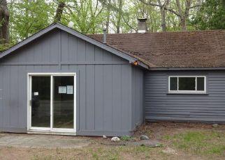 Foreclosure Home in Newaygo county, MI ID: F4498583