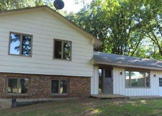 Casa en ejecución hipotecaria in Sherburne Condado, MN ID: F4500190