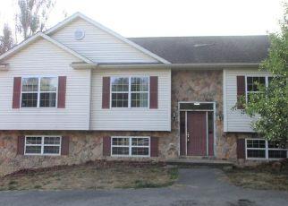 Casa en ejecución hipotecaria in Ford City, PA, 16226,  ANDERSON RD ID: F4500594