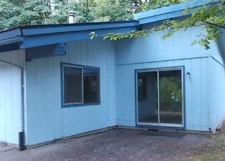 Casa en ejecución hipotecaria in Shelton, WA, 98584,  W BULLDOZER FLTS ID: F4500705