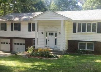 Casa en ejecución hipotecaria in Hopewell Junction, NY, 12533,  BRUSK DR ID: F4504006