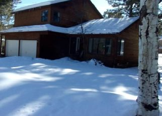 Foreclosure Home in Durango, CO, 81301,  OAK DR ID: F4506862