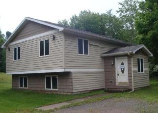 Casa en ejecución hipotecaria in Douglas Condado, WI ID: F4508975