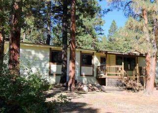 Casa en ejecución hipotecaria in Durango, CO, 81303,  HOLLY HOCK TRL ID: F4509198