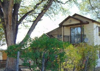 Foreclosure Home in Delta county, CO ID: F4514162