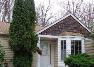 Casa en ejecución hipotecaria in Monticello, NY, 12701,  HIDDEN RIDGE DR ID: F4516941