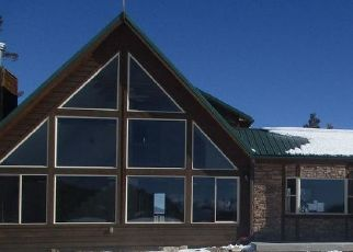 Foreclosure Home in Park county, CO ID: F4517085