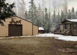 Foreclosure Home in Mackinac county, MI ID: F4520773