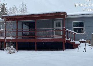 Foreclosure Home in La Plata county, CO ID: F4521476