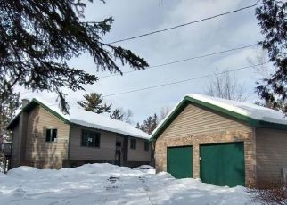 Foreclosure Home in Eveleth, MN, 55734,  ELY LAKE DR ID: F4522343