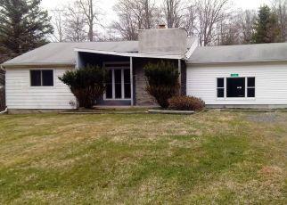 Casa en ejecución hipotecaria in Pocono Lake, PA, 18347,  ALTEMOSE RD ID: F4526126