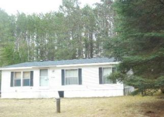 Foreclosure Home in Pine county, MN ID: F4527163