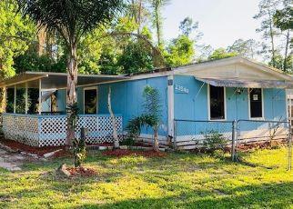 Foreclosure Home in Astor, FL, 32102,  DEER RD ID: F4527412