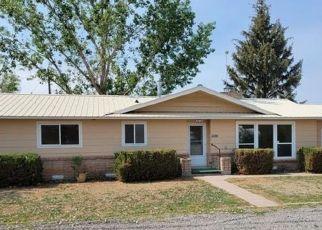 Foreclosure Home in Delta county, CO ID: F4528610