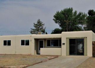 Foreclosure Home in Farmington, NM, 87402,  PIEDRA VISTA DR ID: F4530236