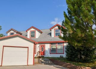 Foreclosure Home in Parachute, CO, 81635,  MEADOW DR ID: F4534419