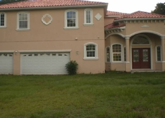 Foreclosed Home en NIXON RD, Tampa, FL - 33624