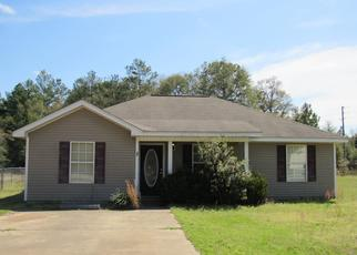 Foreclosed Home en CLAY BASKET CT, Defuniak Springs, FL - 32433