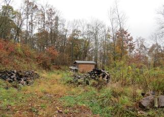 Foreclosed Home en STATE HIGHWAY 8, Mount Upton, NY - 13809