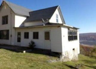 Foreclosed Home en COUNTY ROAD 12, Naples, NY - 14512