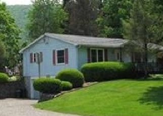 Foreclosed Home en LARUE RD, Bath, NY - 14810