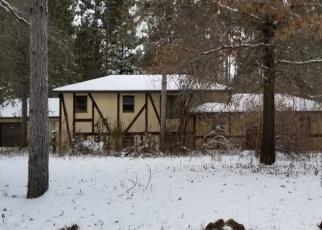 Casa en ejecución hipotecaria in Hastings, MN, 55033,  UPPER 193RD ST E ID: P1074034