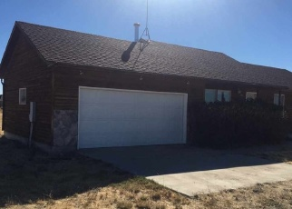 Foreclosure Home in Spring Creek, NV, 89815,  ONE EYE DR ID: P1079757