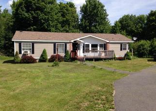 Foreclosed Home en RAND HILL RD, Altona, NY - 12910
