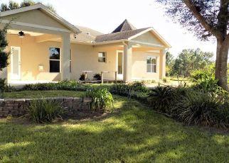 Foreclosed Home en BLOOMER RD, Polk City, FL - 33868