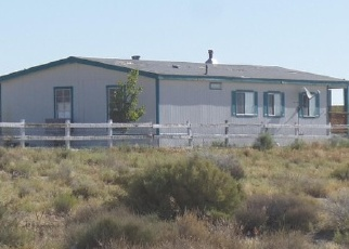 Foreclosure Home in Silver Springs, NV, 89429,  E BADGER ST ID: P1094108