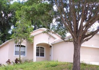 Foreclosed Home in DON WILSON AVE, Apopka, FL - 32712