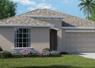 Foreclosed Home in CLIMBING DAYFLOWER DR, Ruskin, FL - 33570