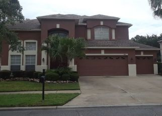 Foreclosed Home en OAK GROVE CHASE DR, Orlando, FL - 32820