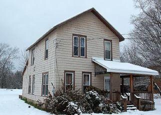 Foreclosed Home en GERRY ELLINGTON RD, Gerry, NY - 14740