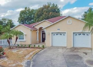Foreclosed Home in MOHR LOOP, Tampa, FL - 33615