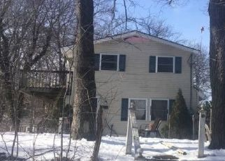 Foreclosed Home en SLATER RD, Patterson, NY - 12563