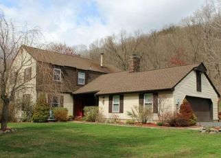 Foreclosed Home en DEBBIE CT, Chester, NY - 10918