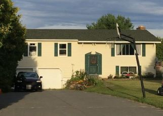 Foreclosed Home en CARRIAGE HL, Peru, NY - 12972