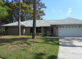 Foreclosed Home en WINDFLOWER CIR, Tampa, FL - 33624