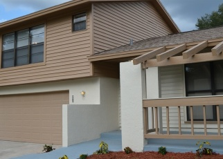 Foreclosed Home in AKITA DR, Tampa, FL - 33624