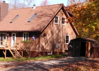 Foreclosed Home en MOUNTAIN AVE, Stamford, NY - 12167