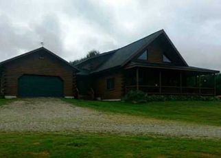 Foreclosed Home en ROUTE 62, South Dayton, NY - 14138