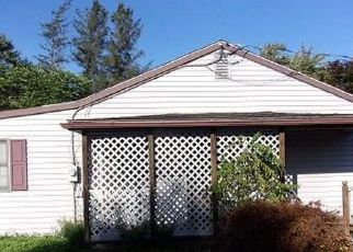 Foreclosed Home en S EAGLE VALLEY RD, Julian, PA - 16844