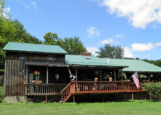 Foreclosed Home en LAKE CECIL RD, Sidney Center, NY - 13839