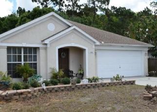 Foreclosed Home en FORT JEFFERSON BLVD, Orlando, FL - 32822