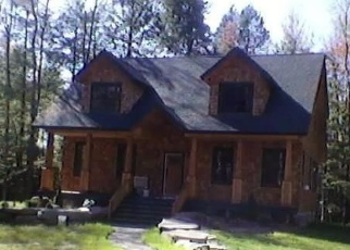 Foreclosed Home en CARDINAL DR, Windham, NY - 12496