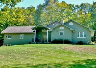 Foreclosed Home en NINE PARTNERS RD, Clinton Corners, NY - 12514